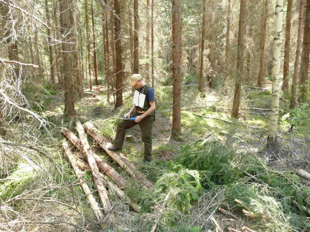 Bild på kvalitetsuppföljning och inventering i skog.